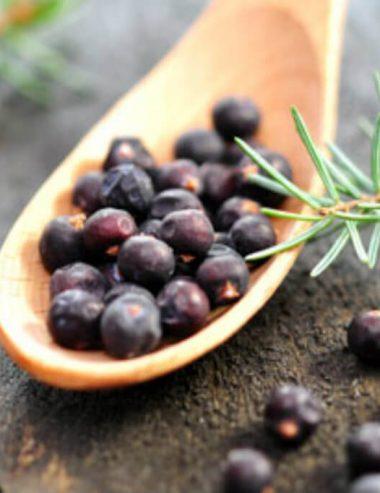 Proprietà e benefici del ginepro, in cucina e non solo