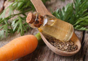 olio essenziale carota