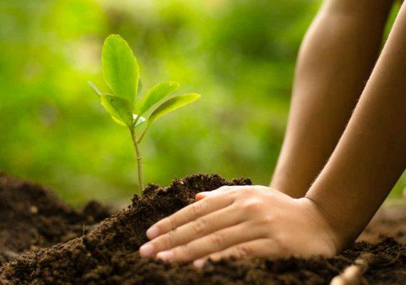 environmentnews app
