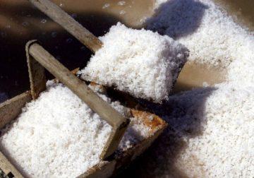 Sale dolce di Cervia, l'eccellenza italiana del gusto da portare in tavola