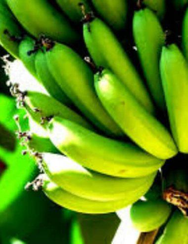 Farina di banane verdi, la soluzione senza glutine per gli intolleranti