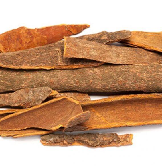Olio essenziale di legno di ho, raro e prezioso alleato del benessere
