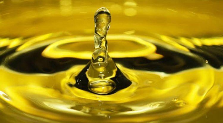 termolabilità degli oli