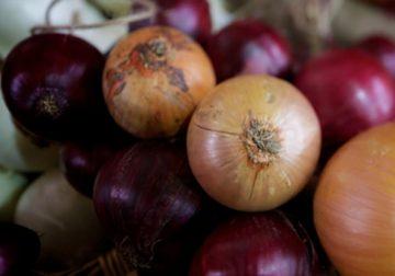 Cipolle, tutte le varietà e gli utilizzi di un ortaggio sano e gustoso
