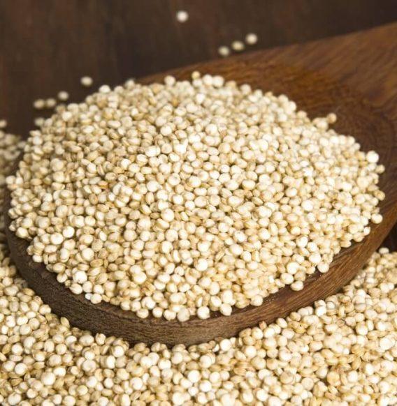 Quinoa, il finto cereale ricchissimo di proteine vegetali