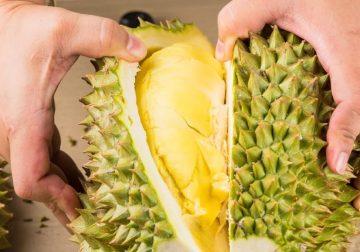 Durian: che sapore ha e come si mangia questo frutto così curioso