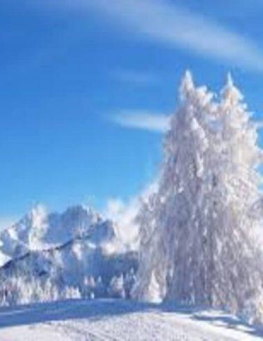 Oli essenziali per l'inverno, scegli quelli giusti per la stagione più fredda