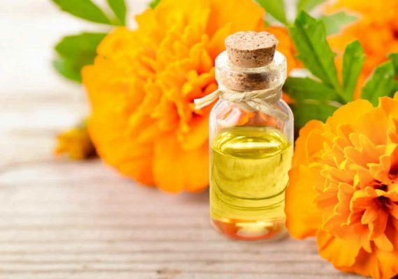 olio essenziale tagete