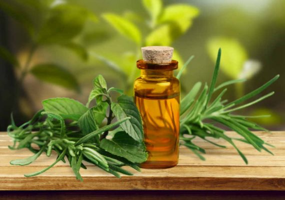 olio essenziale mirto