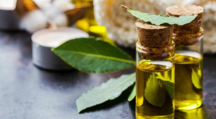 alloro olio essenziale