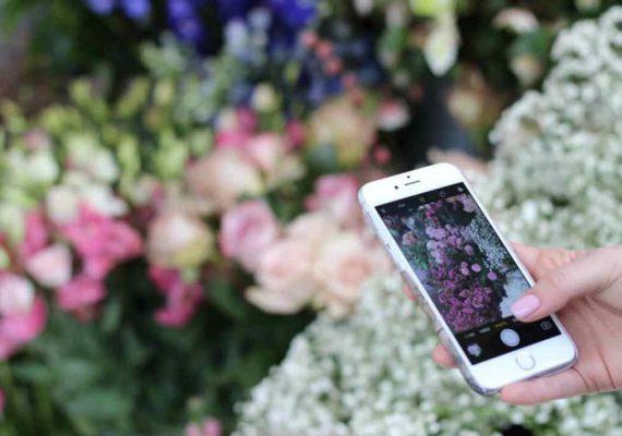 plantsnap app