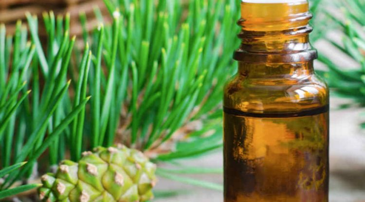 abete olio essenziale
