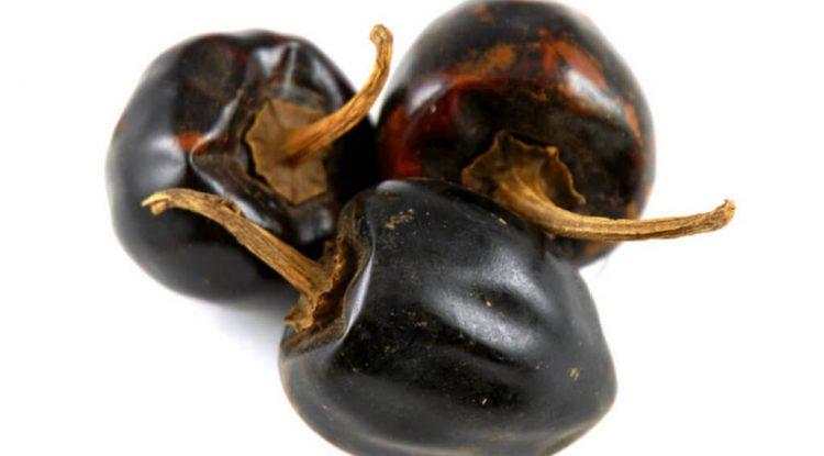 peperoncino cascabel