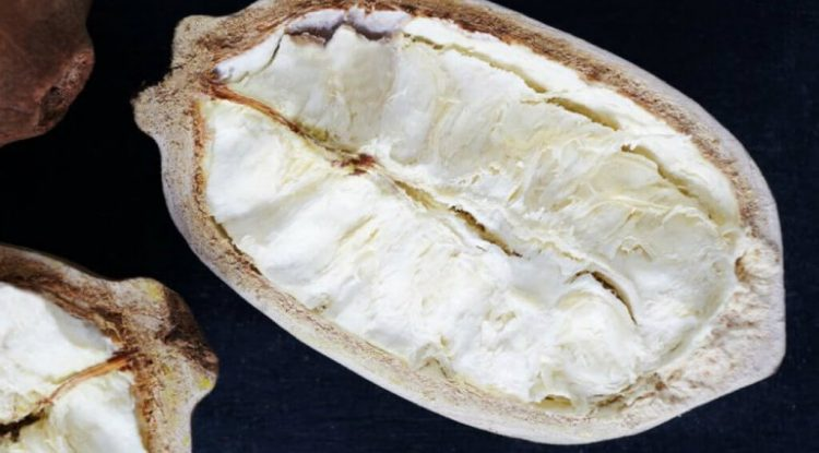 burro di capuaçu