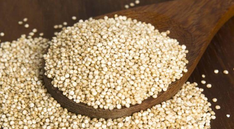 quinoa proteine