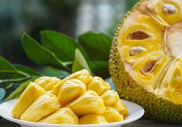 Giaca, il gigantesco frutto dolce e salato allo stesso tempo