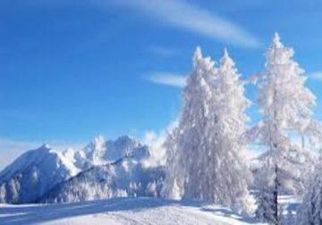 oli-essenziali-inverno